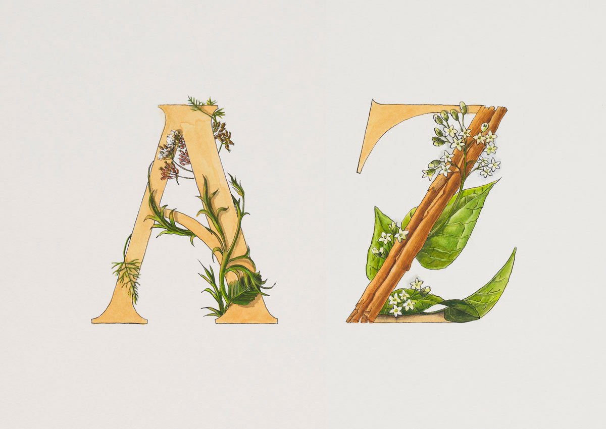 Buchstaben Aquarell Illustration
